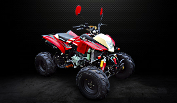 AS250S-11C (Cuatrimoto Red) completo
