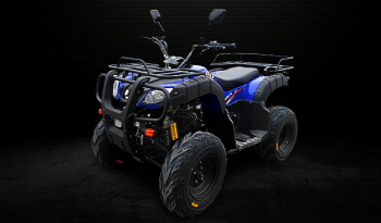 AS150S-11C (Cuatrimoto Blue) completo